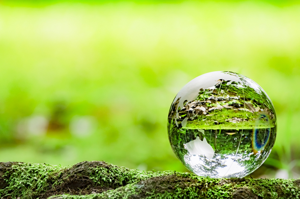 CSR活動報告①ISO14001の取得・維持